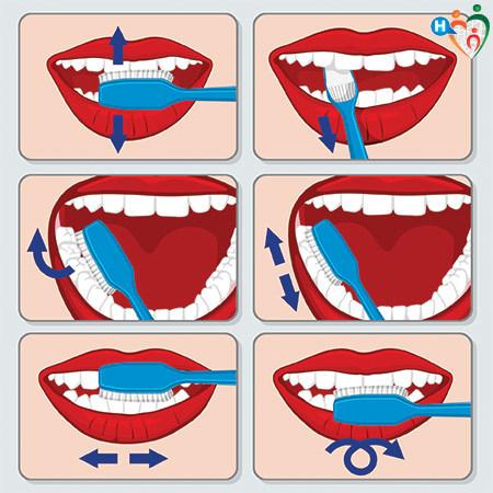 Immagine che mostra come si lavano i denti