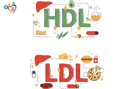 Immagine che mostra quali alimenti contengono hdl e quali ldl