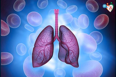 immagine che ritrae polmoni e globuli sullo sfondo