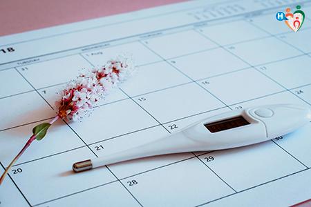 Immagine che ritrae un calendario per l'ovulazione