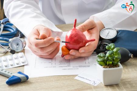 Immagine che ritrae un dottore che mostra un modello di vescica