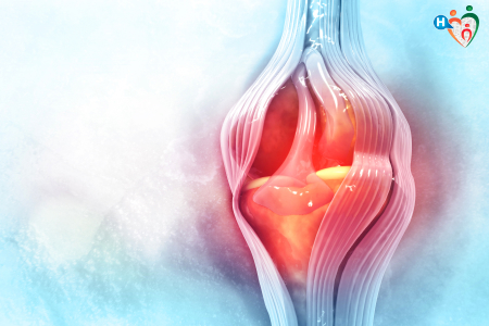 Immagine di legamenti del ginocchio
