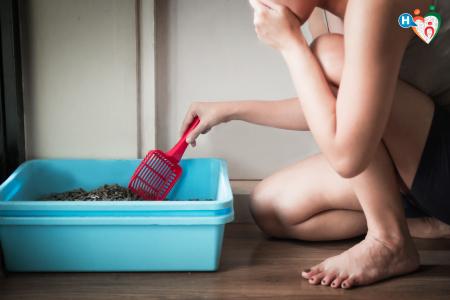 Immagine di donna che pulisce la lettiera del gatto