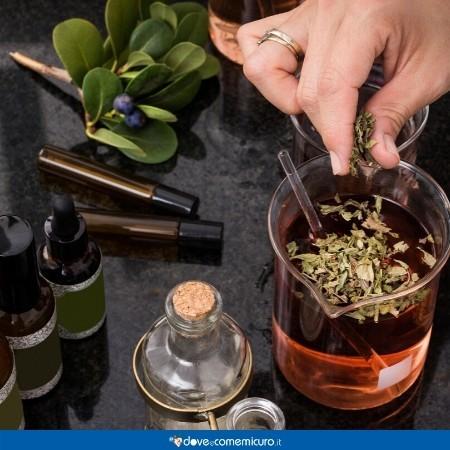 Immagine che ritrae un tavolo con prodotti erboristici in preparazione