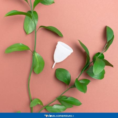 Immagine che ritrae una coppetta mestruale tra foglie verdi