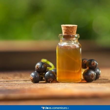 Immagine che raffigura una boccetta di olio di ribes nigrum