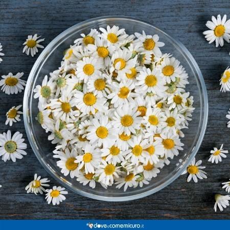 Immagine che ritrae una ciotola di fiori di camomilla utili per gli impacchi sugli occhi