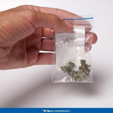 Immagine che ritrae una mano che tiene una bustina di cannabis