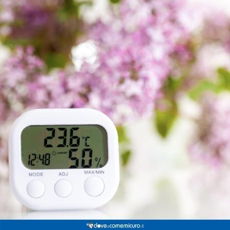 Immagine che mostra un termometro digitale per la misurazione dell'umidità dell'aria