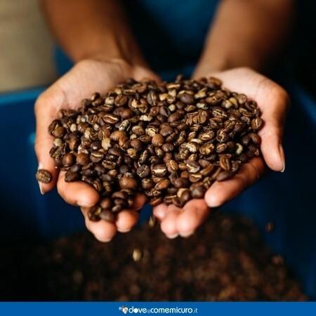 Immagine che mostra una persona che tiene tra le mani un mucchio di chicchi di caffè tostati