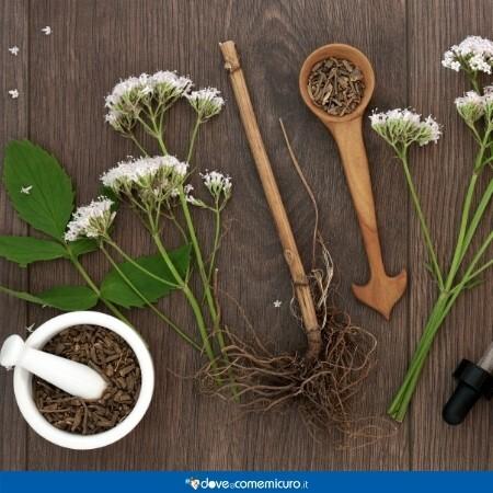 Immagine che mostra fiori di valeriana e parti della pianta su un tavolo