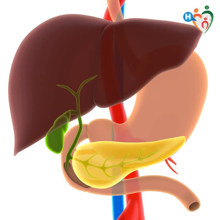 dieta della cistifellea dopo la rimozione della chirurgia