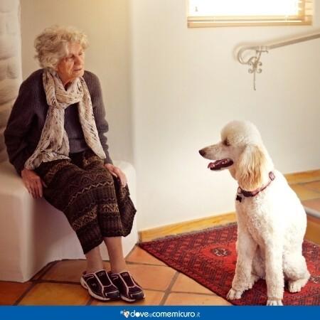 Immagine che rappresenta un'anziana signora con un cane di fronte a lei in un o spazio chiuso