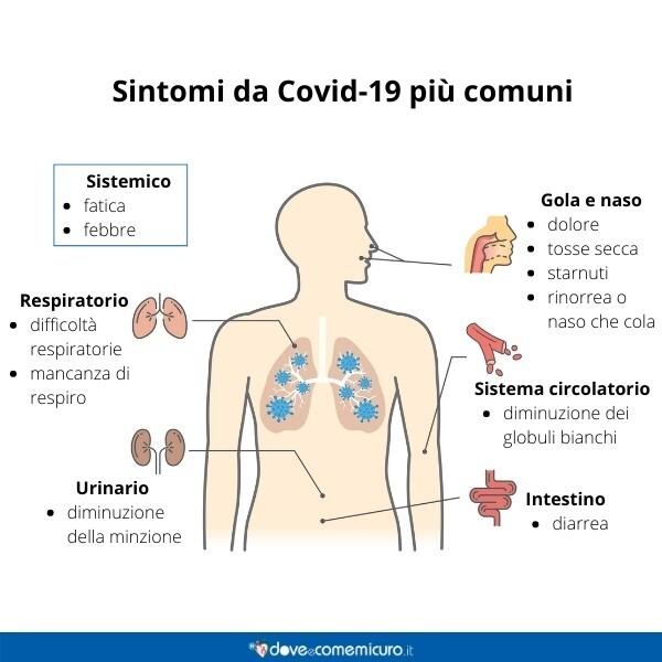 Immagine infografica che rappresenta i sintomi covid