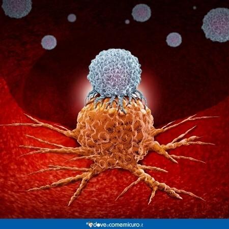 Immagine che rappresenta l'immunoterapia del globulo bianco su un corpo esterno