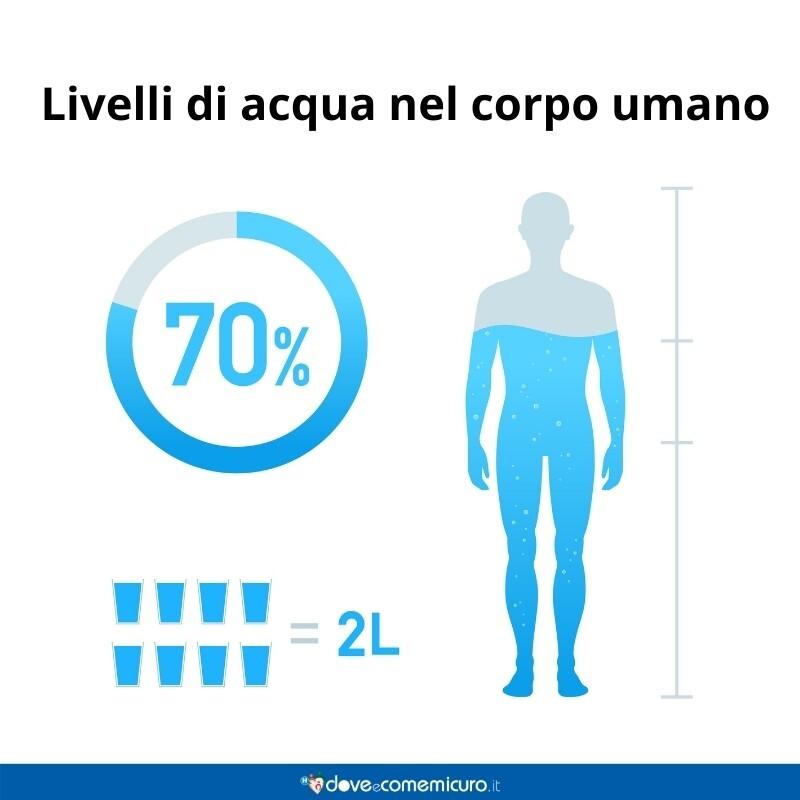 Immagine infografica che rappresenta i livelli d'acqua nel corpo umano