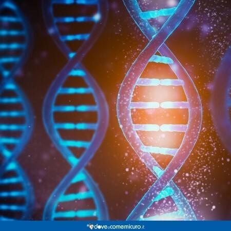 Immagine che rappresenta dei geni