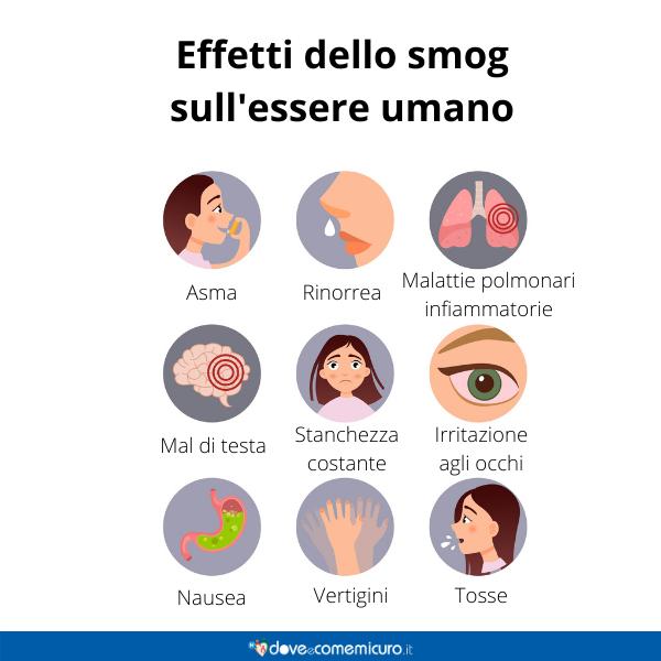 Immagine infografica che rappresenta effetti dello smog sulla salute umana