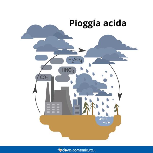 Immagine infografica che rappresenta il circolo della pioggia acida