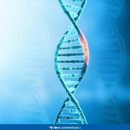 Immagine che rappresenta un gene del dna