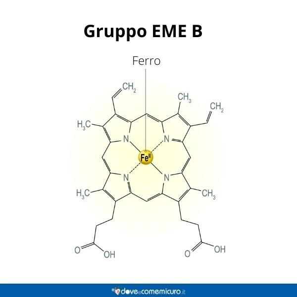 Immagine infografica che rappresenta il gruppo Eme b