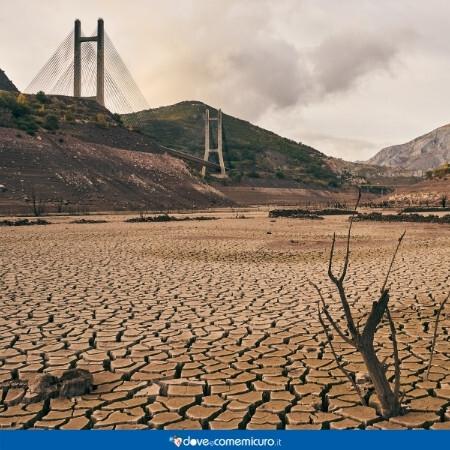 Immagine che rappresenta siccità