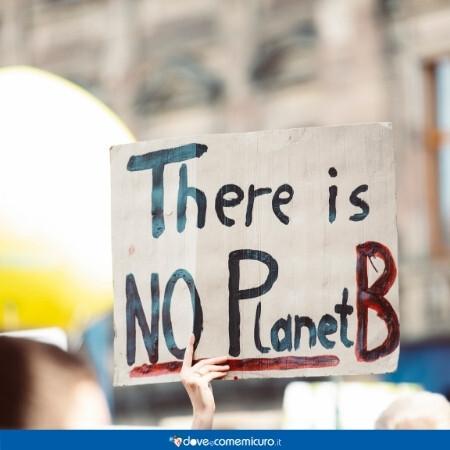 """Immagine che rappresenta un cartello che dice """"there is no planet B"""" ad una manifestazione per il clima"""
