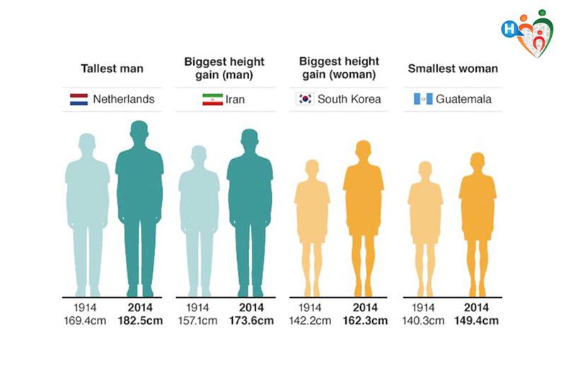 Altezza, comparazione fra gli uomini più alti del mondo e quelli più bassi