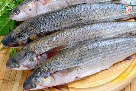Vitamina B5: immagine di pesce