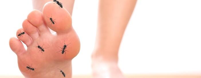 Formicolio mani e piedi: cause e rimedi più efficaci