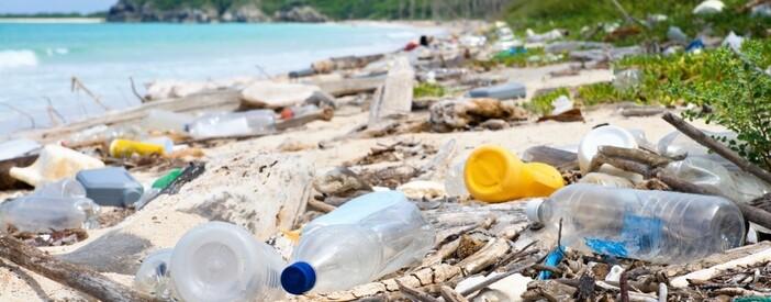 Plastica e ambiente: quali sono le conseguenze?