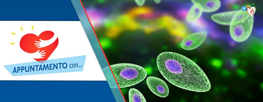 Toxoplasmosi: contagio, sintomi e cura