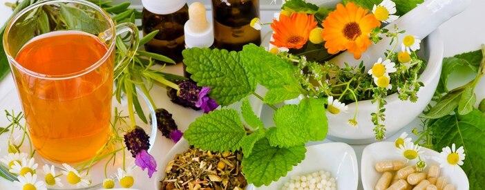Preparati vegetali: metodiche, qualità e sicurezza
