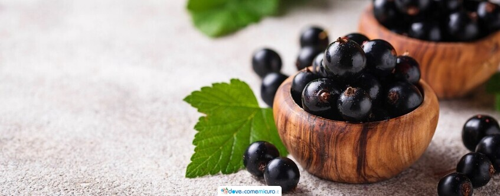 Ribes nigrum: posologia, proprietà e controindicazioni
