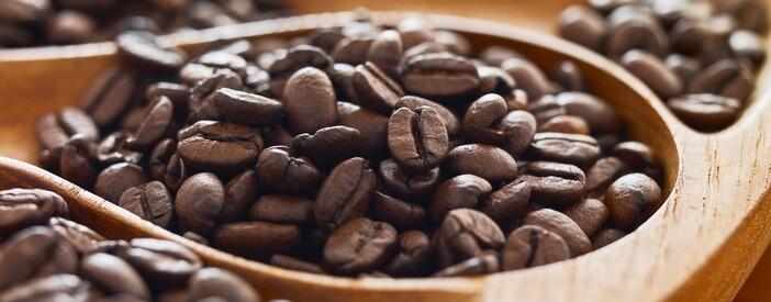 Coffea arabica L.Proprietà, caratteristiche e dosi consigliate