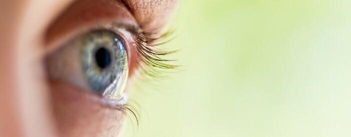 Occhio e visione: funzione, patologie e cura