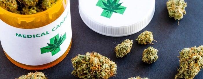 Cannabis sativa L: cos'è, proprietà ed effetti