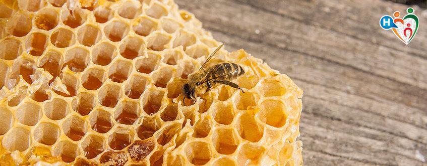 Miele: un alimento prezioso