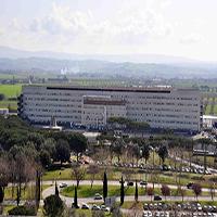 Ospedale Misericordia di Grosseto