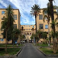 Presidio Ospedaliero Vittorio Emanuele - AOU Policlinico Vittorio Emanuele