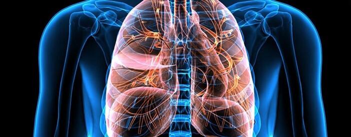 Apparato respiratorio: scopri l'area terapeutica
