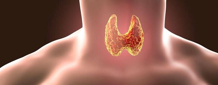 Tumore alla tiroide: dove sottoporsi all'intervento in Basilicata?